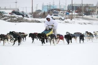 A dog sled race, also known as mushing, commences down by the frozen Mackenzie River during Inuvik's 62nd annual Muskrat Jamboree festival in April 2019.