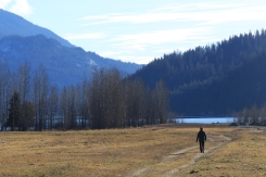 Going for a walk in Crawford Bay, B.C., on Jan. 14, 2021.